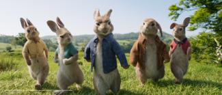 PETER RABBIT™   Sony Pictures Entertainment